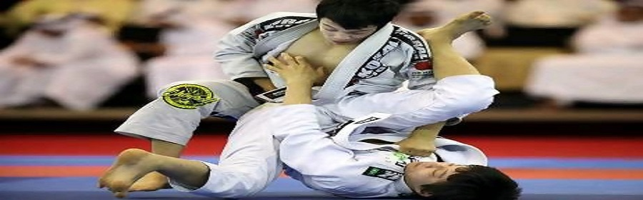 miyao-Brothers huge banner